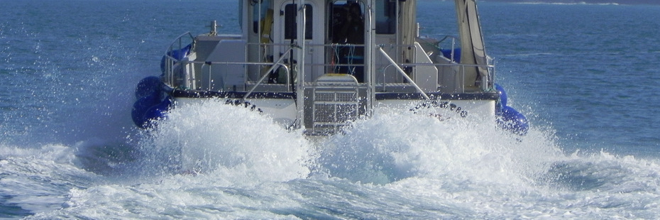 Newquay Sea Safaris and Fishing Trips