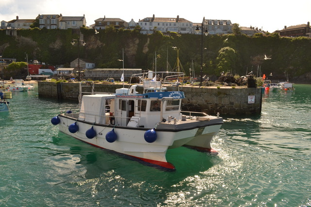 Atlantic Diver...Boat Trips in Newquay