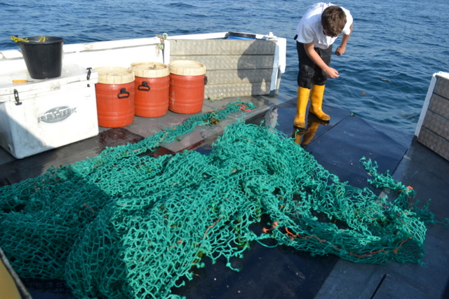 "Huge Trawl Net Recovered as Fishing For Litter by Ben Lowe of ""Newquay Crab"""