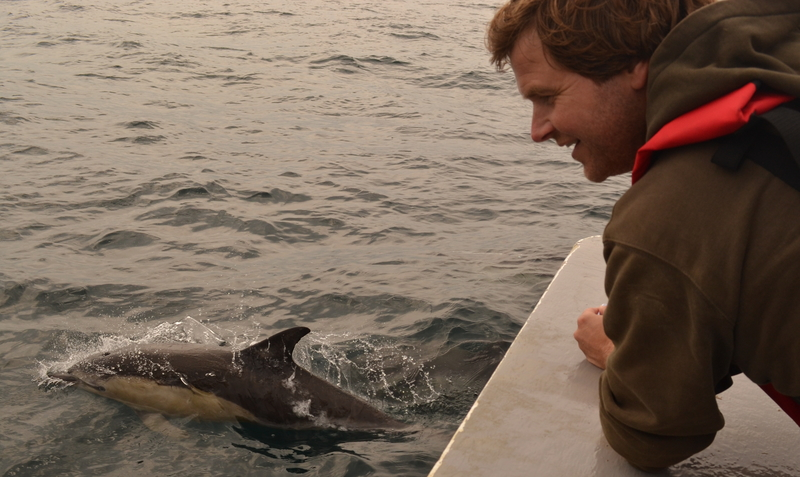 """Tony watches Common Dolphin from Bow of"""" Atlantic Diver"""" about 20 miles from Newquay"""