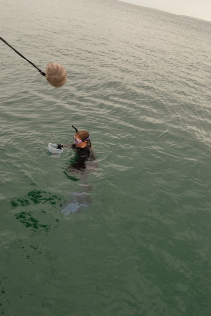 Miranda filming in the sea...a real Pro