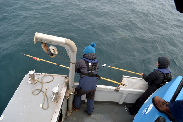 Professors Lucy Hawkes and Matt Witt paused to tag Basking Shark
