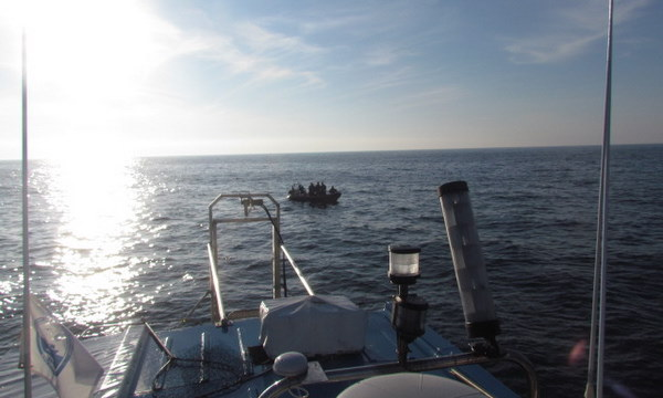 Rescue boat Josh and Atlantic Diver search for net entangled Whale