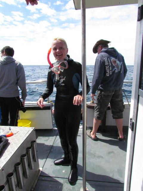 Cage Diving Snorkeller