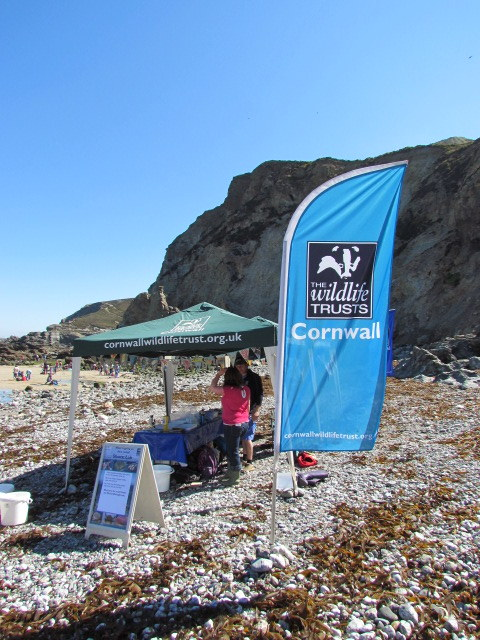 Cornwall Wildlife Trust and St Agnes VMCA gather at Travaunce Cove for Marine Discovery Day
