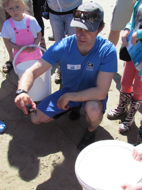 Matt Slater chats about one of the many crab species we found