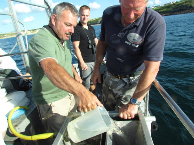 Passengers help with release
