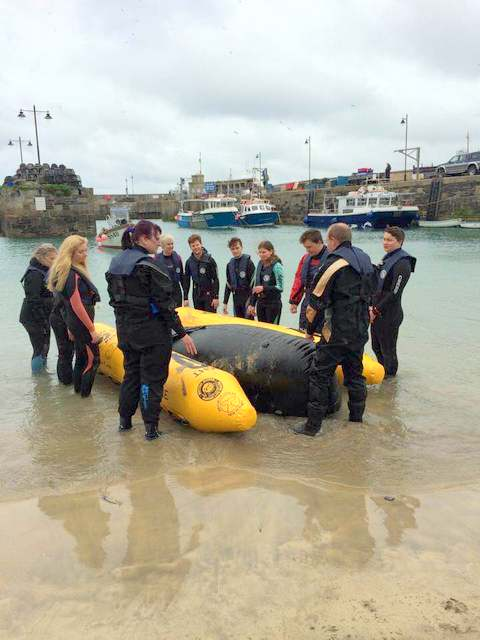 Pilot Whale Rescue Training with BDMLR
