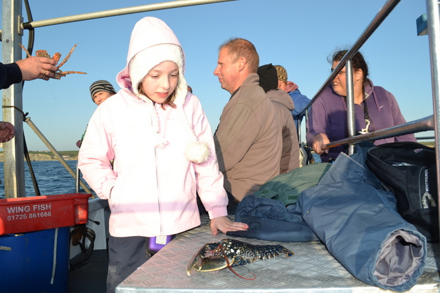younger members of Newquay Marine group meeting her first juvenile lobster